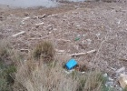 Marine litter in the Evros Delta